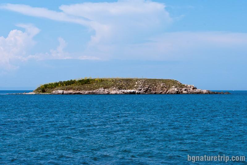 Змийският остров, Черно море